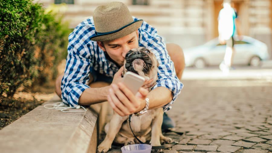 Mann mit Hund und kleinem Smartphone in der Hand