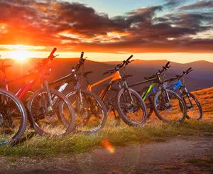 Product image (Pedelec oder E-Bike)